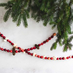 guirlande-canneberge-fraiche-fresh-cranberry-garland